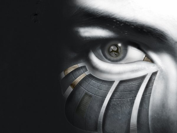 Oeil pour oeil...