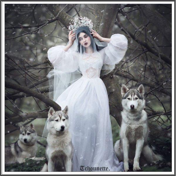 Princesses gothiques