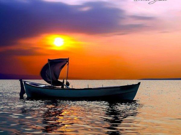 Chacun mène sa barque comme il l'entend !