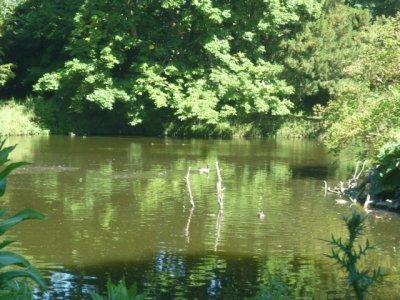 P'tite balade bucolique au Parc Balbi de Versailles