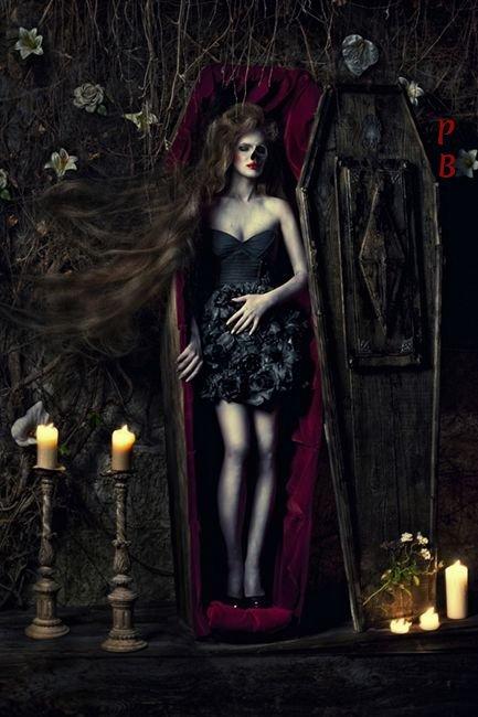 Vampire vous avez dit vampire