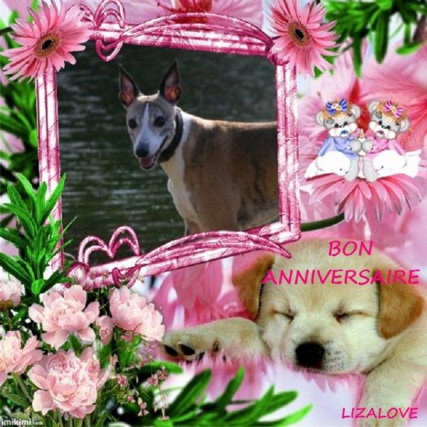 Merci à Claire pour ce joli montage de Doowy pour son anniversaire :)