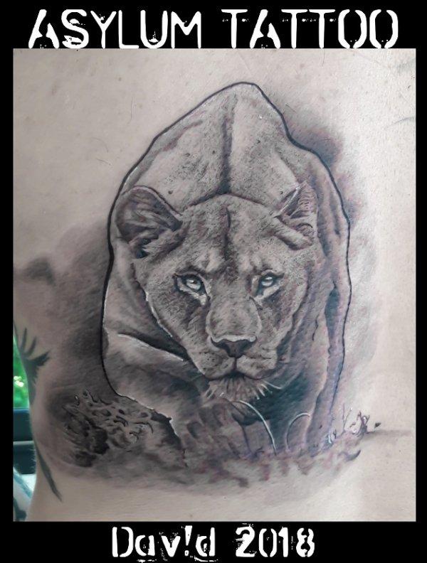 ASYLUM TATTOO LIONNE