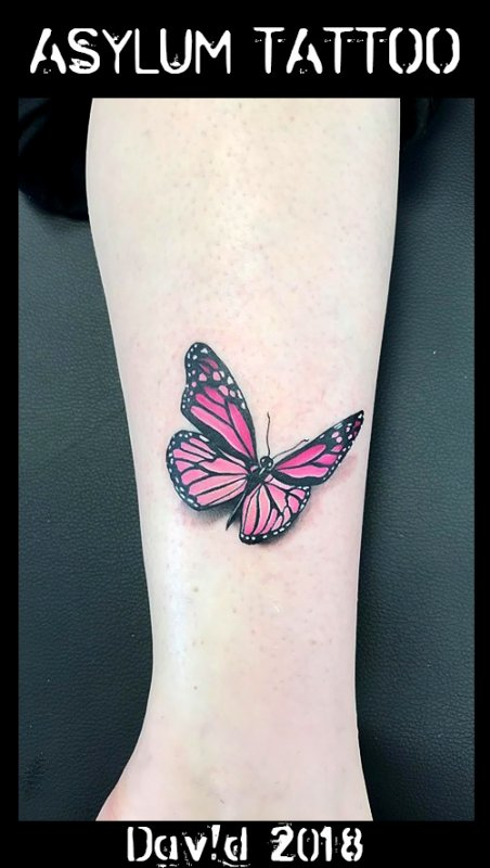 TATTOO PAPILLON ASYLUM TATTOO