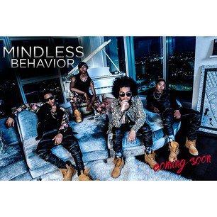 The Mindless Behavior