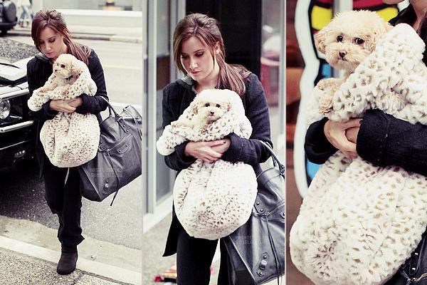 ♦CANDIDS 08 mars 2011 //Ashley a été aperçue avec Maui dans les bras en route pour la salle de gyme à Vancouver
