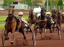 vendredi 12 septembre 2014 - Attelé- Vincennes . prix du journal geny course . 60000euros - 2850m-15 partant - départ 20h25