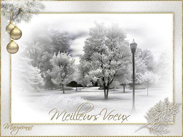 je passe pour vous souhaiter un excellent réveillon et une bonne fin d'année à tous.