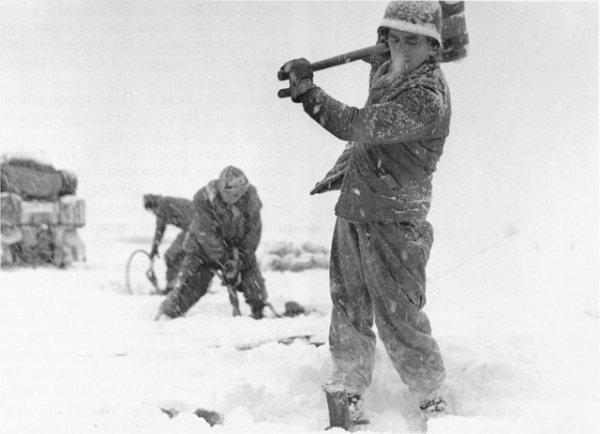 36e division, dans la région de Weibruch
