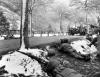 les environs de Climbach, 14 décembre 1944 Company F, 103th 411th Infantry Regiment,...