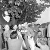 274th Infantry Regiment  04 juillet 1945