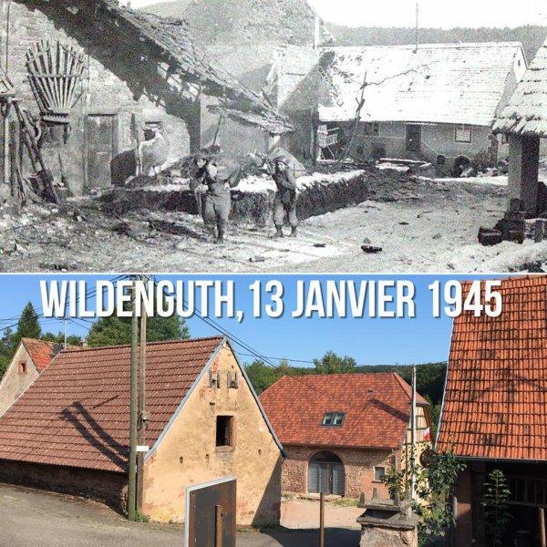 Wildenguth