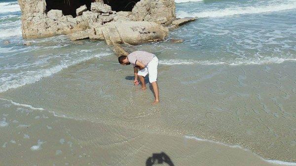 en train de cherche des escargots
