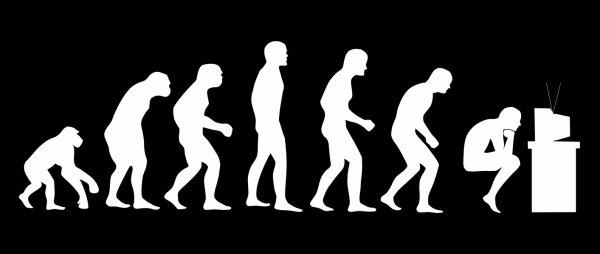 L'évolution humaine  :