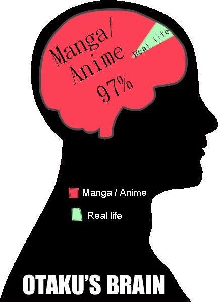 le cerveau d'un otaku :