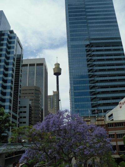 Vendredi, Samedi à Sydney