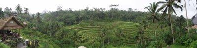 De Kuta à Ubud