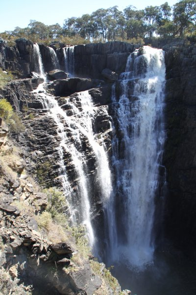 Les parcs nationaux entre Brisbane et Sydney