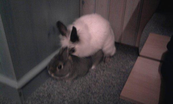 <3 Jack & Maya <3