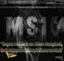 Photo de msi13