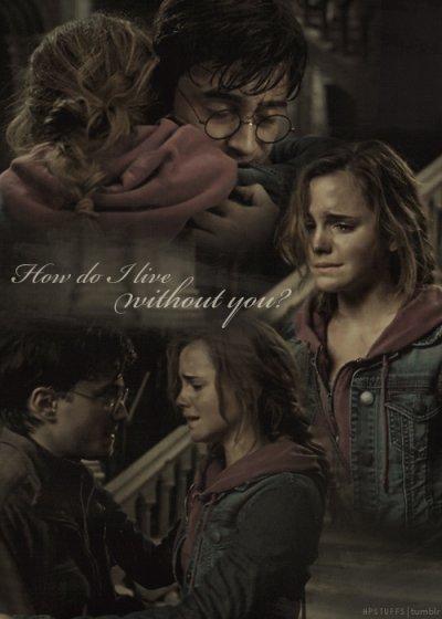 Les mots ne sont pas assez fort pour définir leur amitié ! ... ♥