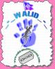 walid-alex991