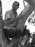 Photo de kangourou2