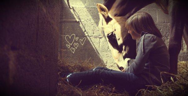 Le cheval c'est celui qui possède un immense pouvoir, Nous rendre le sourire des qu'on le vois ♥