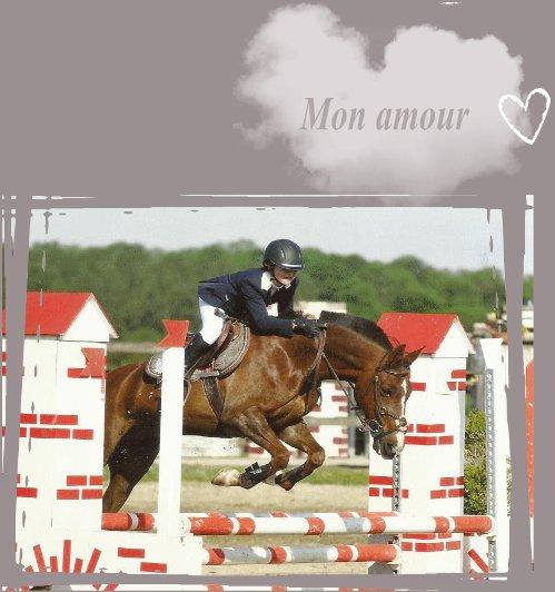 Si il y a bien quelque chose qui fait mal dans le fait d'avoir un cheval, c'est de devoir lui dire au revoir un jour ou l'autre.. ♥