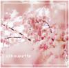 xShoukette