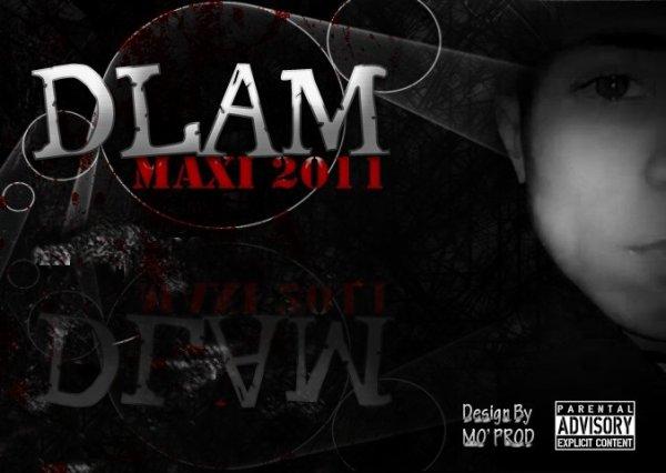 new maxi delam -giro-