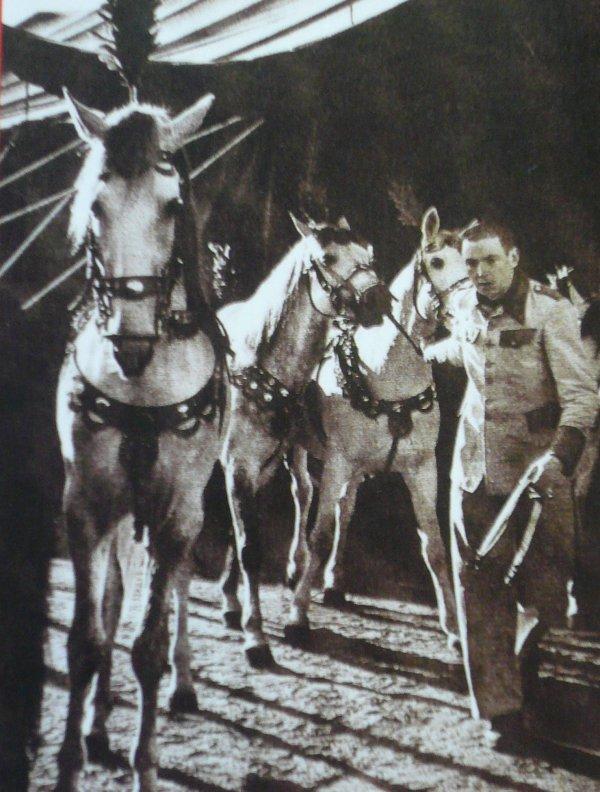 La Cavalerie de Will Strassburgger la suite ...