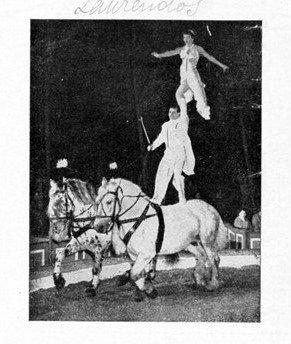 Ballet équèstre, équilibre, grâce et force ... Miss Renters et cie ...
