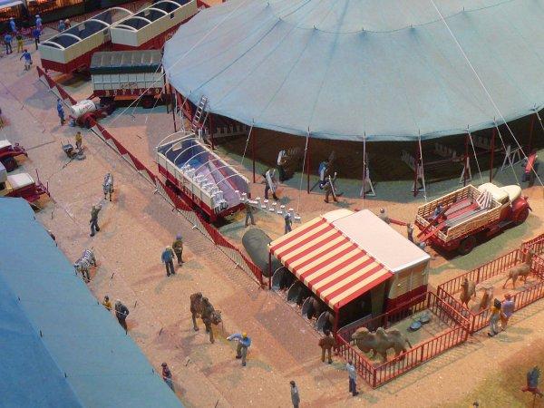 Le Cirque BUFFALO d' Alain LELUYER & J.C FRONTINI