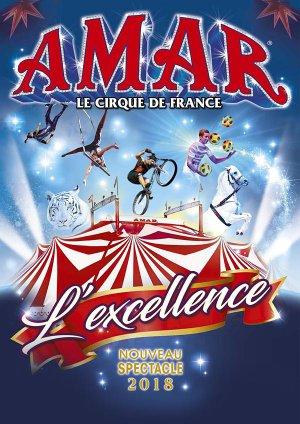 """Le Cirque AMAR 2018 c'est """" L'excellence """""""