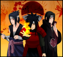 Photo de Sshippuden-Actu