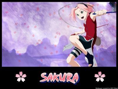 blog image de sakura