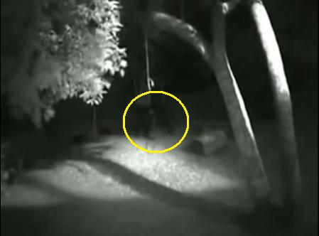 paranormal loup garou