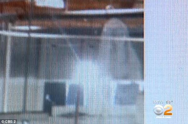 Dossier Spécial n°21 : Un récent baptisé aurait photographié un ange en Californie