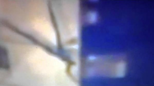 Une étrange créature « élastique » filmée en Russie