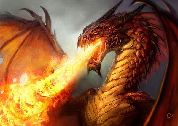 Sondage Du Mois N°9 : Le dragon - Une créature légendaire