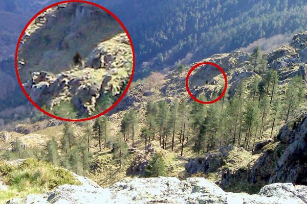 Un Yéti vit-il dans les Pyrénées espagnoles ?
