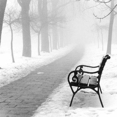 Il faut apprendre à oublier. Sans ça, l'existence devient impossible. Alice Parizeau