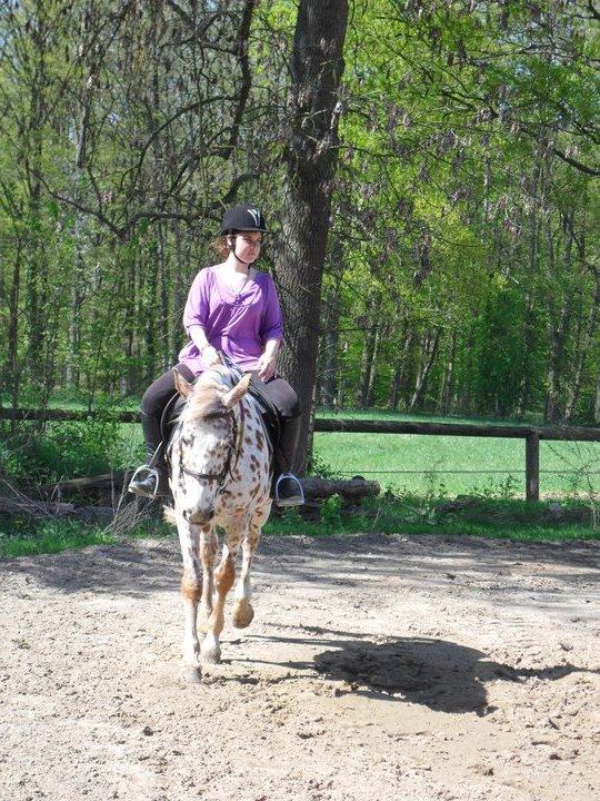 """""""Le cheval porte son cavalier avec vigueur et rapidité . Mais c'est le cavalier qui conduit le cheval . Le talent conduit l'artiste à de hauts sommets avec vigueur et rapidité . Mais c'est l'artiste qui maîtrise son talent ."""" (Vassili Kandinski)"""