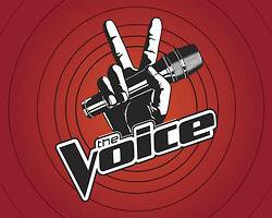 Les auditions de « The Voice US » pour bientôt
