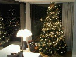 Photo de l'arbre de Noël de Shakira et Gerard Piqué