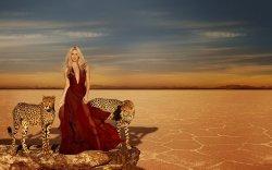 La photo promotionnelle de « Elixir Wild » dévoilée