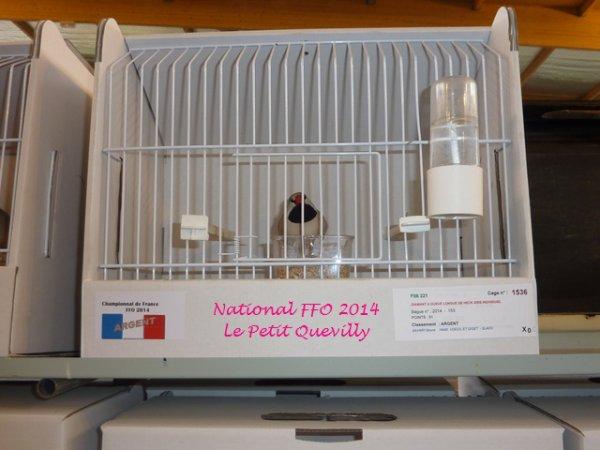 Quelques Images de Mes Oiseaux au National FFO 2014