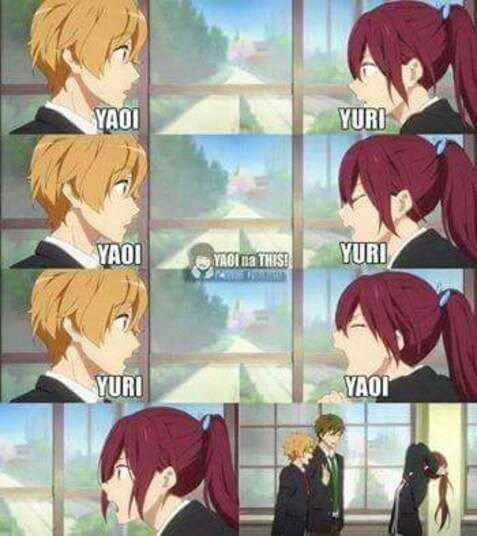Yaoi ou yuri