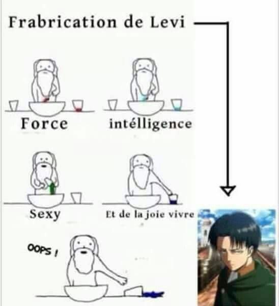La fabrication de Levi